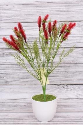 Искусственное растение -  Лагурус красный. 37 см.