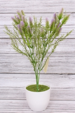 Искусственное растение -  Лагурус сиреневый. 37 см.