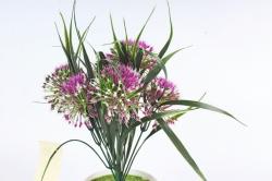 Искусственное растение -  Лук декоративный малиновый  Б10785