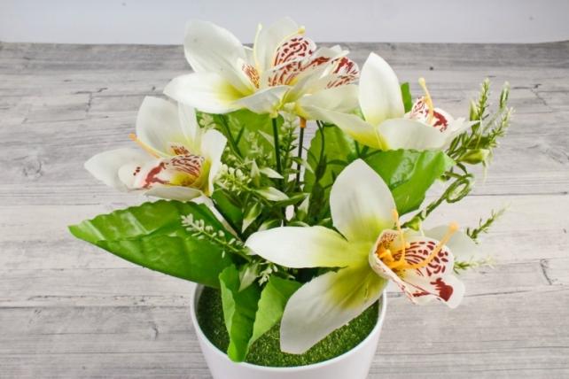 Искусственное растение -  Орхидея в розетке белая Б10713