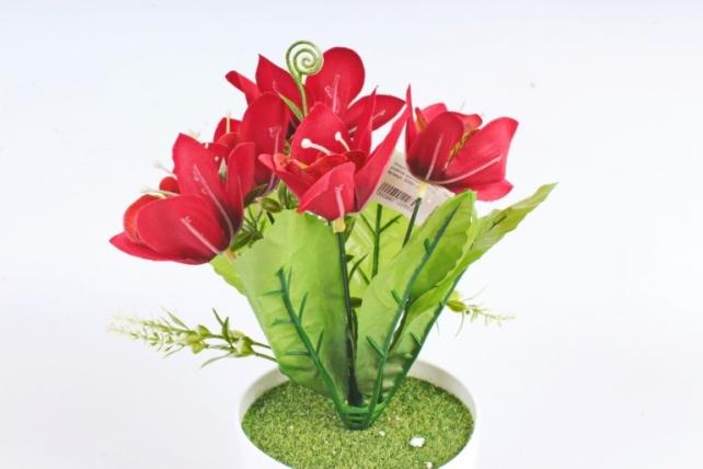 Искусственное растение -  Орхидея в розетке красная Б10713