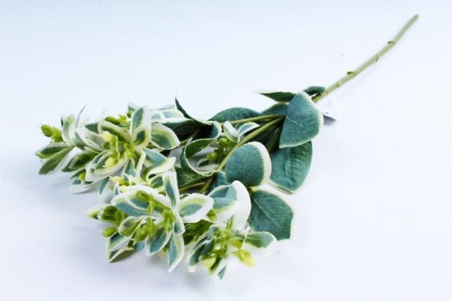 Искусственное растение -  Седум биколор  7060
