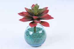 Искусственное растение -  Суккулент Молодило коричневое  Э10304