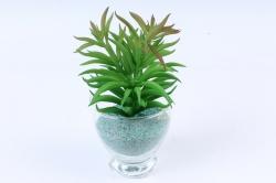 Искусственное растение -  Суккулент Седум мексиканский зелёный  Э10316