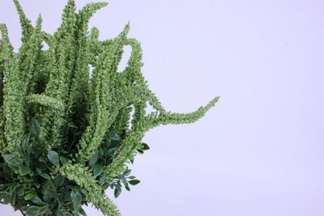 искусственное растение - вероника 20см зеленая (12 штв уп) 5297