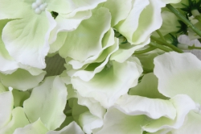 искусственное растение - ветка гортензия нежно-салатовая  60см  kwl879    6528