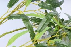 Искусственное растение -  Ветка Ивы плакучей В9808