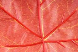 Искусственное растение -  Ветка Клён осенний В10327
