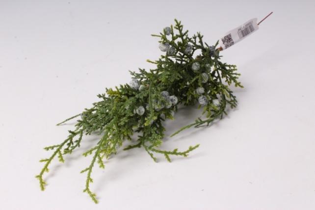 искусственное растение - ветка можжвельника с плодами 20см  4513
