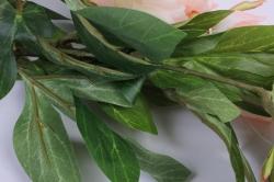 искусственное растение - ветка пиона 110 см персиковая sun117