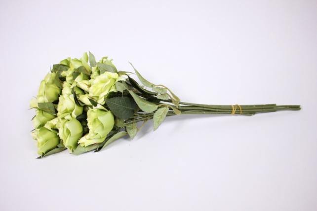 Искусственное растение - Ветка Розы 35см салатовая (12 шт в уп) SUN452