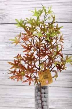 Искусственное растение -  Веточка клёна карликового38 см*20 см терракотовая  21KW075