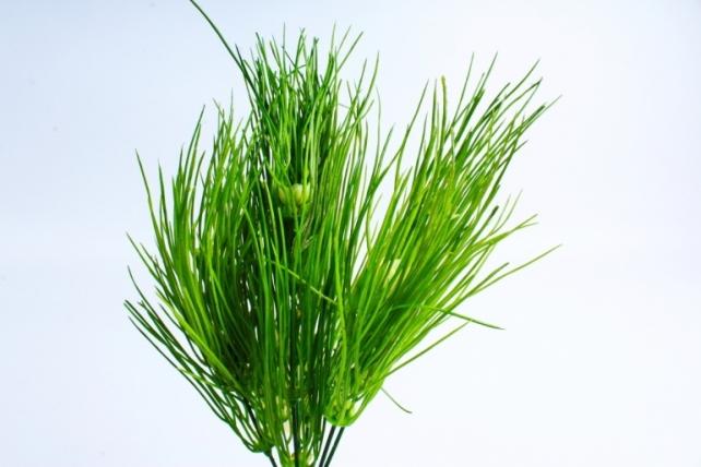 Искусственное растение -  Веточка травы с цветочками  GA8J399