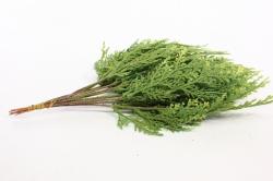 искусственное растение - веточка туи 25 см (12 шт в уп) 1802