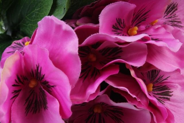 искусственное растение - виола малиновая (12шт в уп) sun417