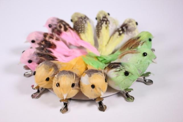 Искусственные птички - 5981 Птичка в круге 10см на клипсе Райская (12шт в уп)