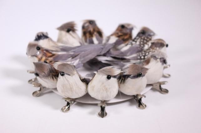 Искусственные птички - 6018 Птичка в круге 10см на клипсе Щегол (12шт в уп)