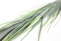 искусственные растения - 1253 осока зеленая 35см