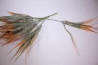 искусственные растения - 1838 трава цветная 25см (6шт в уп)