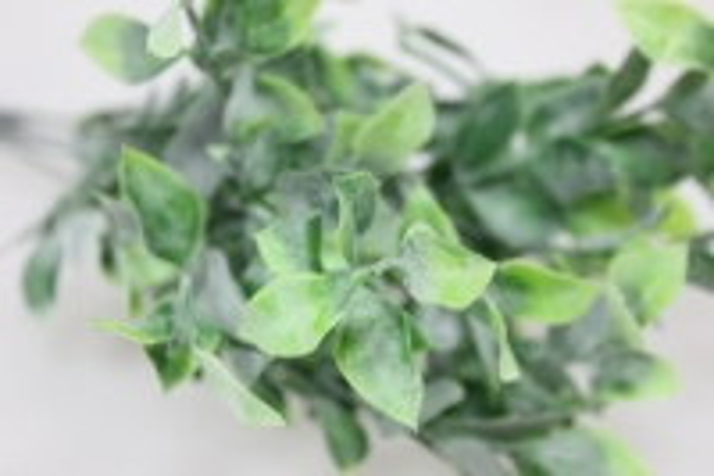 искусственные растения - 3092 самшит зеленый с-1050м5