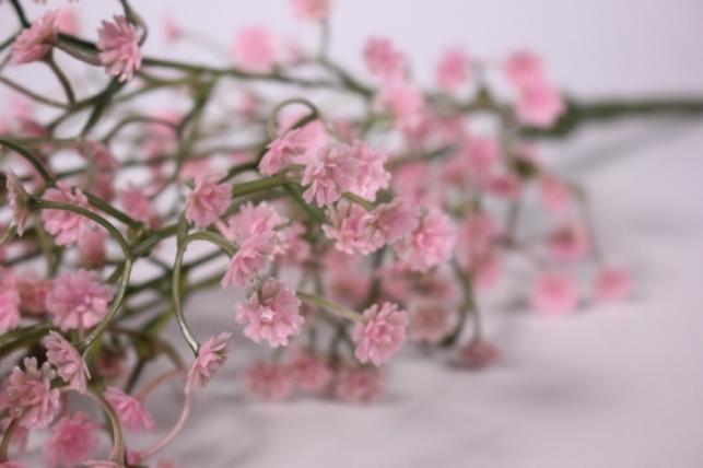 искусственные растения - гипсофила розовая