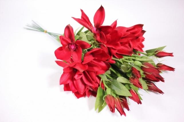 Искусственные растения - Клематис красный 45см(12шт в уп) SUN444