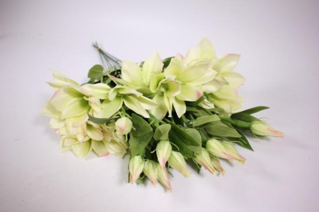 Искусственные растения - Клематис салатовый 45см(12шт в уп) SUN444