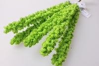 Искусственные растения - Лаконос салат (5шт в уп)  30см цена указана за 1шт.