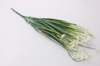 Искусственные растения - Лютик белый  GA60