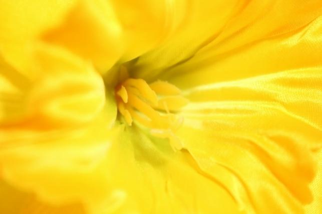 искусственные растения - нарцисс 55см оранж (sun410)