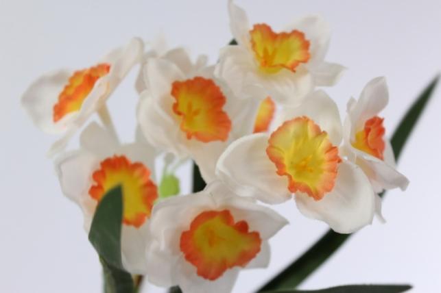 искусственные растения - нарцисс растение 33смбело-оранжевый