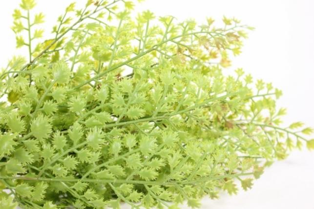 искусственные растения - папоротник40см 18465