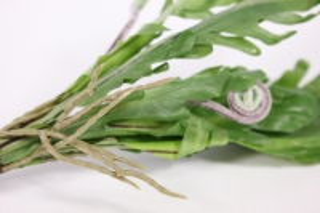 искусственные растения - папоротник листовник мини l=26см 18463