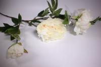 искусственные растения - пион 110см белый sun117