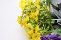 искусственные растения - примула мини сирен/бел/желт. 1шт. цвета в ассортименте.