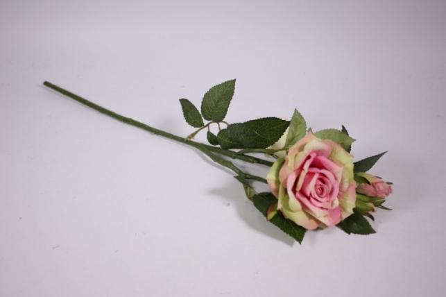 искусственные растения - роза 55см розово-салатовый sun425