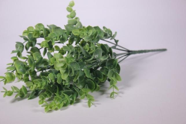 искусственные растения - самшит