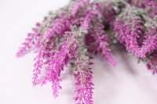 искусственные растения - шалфей 25см (код 3696)