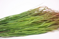 искусственные растения - трава декоративная терракотовая