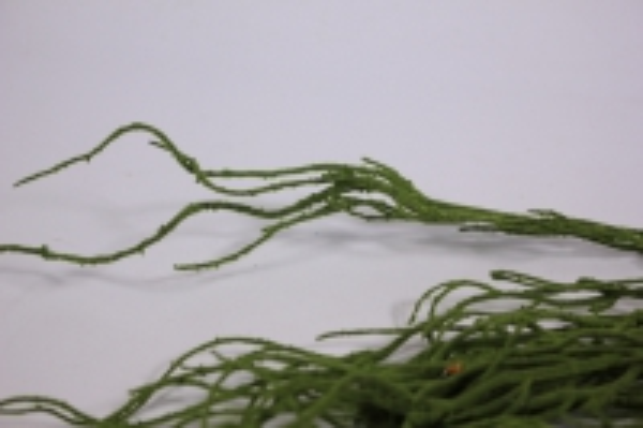искусственные растения - ветка 40см зеленая (12шт в уп) ztik001