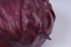капуста красная