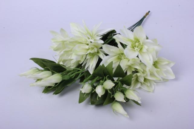 клематис бело-салатовый 45см(12шт в уп) sun500