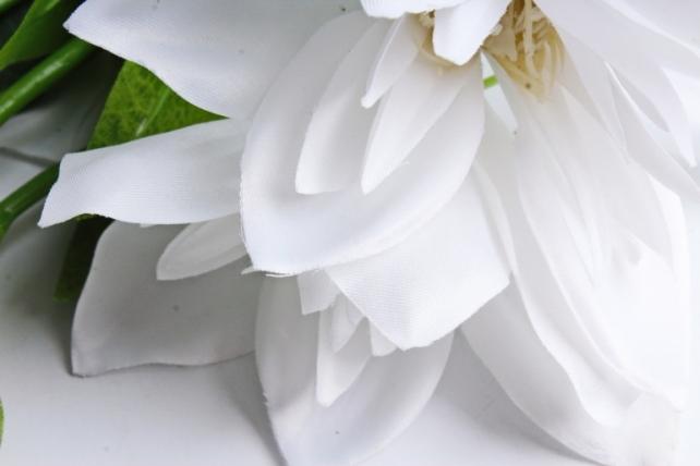 Клематис белый 45см(3 шт в уп) SUN500