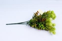Клевер салатовый