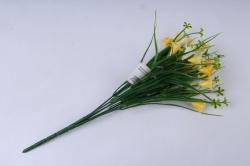 колокольчик кустовой жёлто-белый