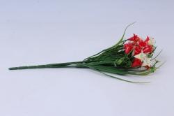 колокольчик кустовой красно-белый