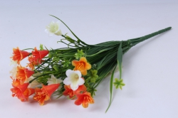 колокольчик кустовой оранжево-белый