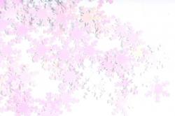 Конфетти 2cm, 15г, в асс., белый Снежинка  CAA005130(А)