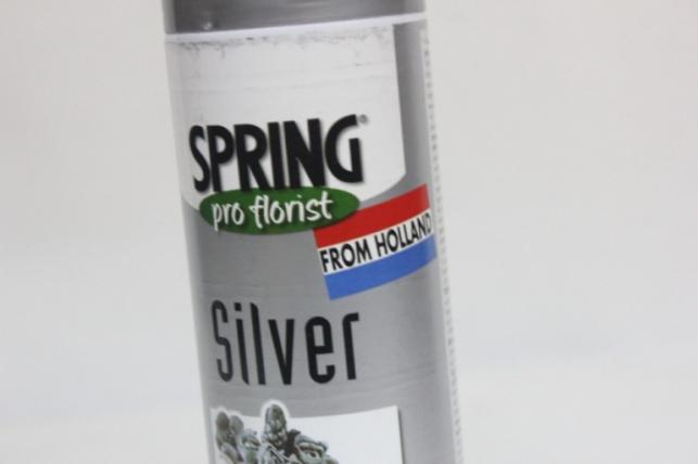Краска-спрей флористическая (300 мл) Spring серебро