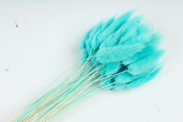 Лагурус (Н) (30шт/пач) голубой 2357